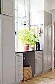 Geranie am Fenster in der Landhausküche in Grau