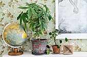 Houseplants, globe and origami ornament against floral wallpaper
