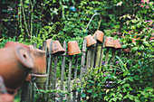 Clay pots on tops of garden fence stakes