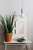 Aloe vera plant in terracotta pot and artwork below DIY pendant lamp