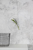 DIY-Wanddekoration: Metallring mit Blume im Reagenzglas