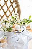 Eggs and cherry blossom branches as spring decorations