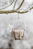 Hoarfrost in garden and basket of bird food hanging from tree