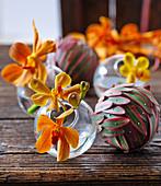 Vanda orchid flowers in glass spheres