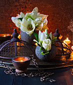 White magnolia flowers in black vases