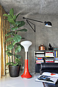 Retro lamp and fiddle leaf fig in living room with concrete wall