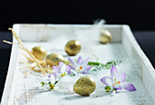 Golden eggs, snowdrops and crocuses on white tray