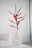 Decorative branch of red berries in vase on table