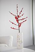 Dekorativer Zweig mit roten Beeren in Vase auf Tisch