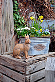 Bunny statue next to bucket garden of daffodils and violets