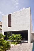 Modern, architect-designed, concrete house with tropical garden
