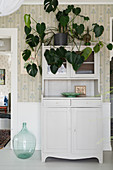 Swiss cheese plant on top of old dresser in hallway with vintage-style wallpaper