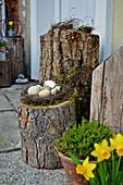 Eggs in Easter nest on tree stump