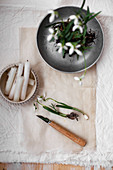 Snowdrops with root ball in vintage metal dish next to candles and knife