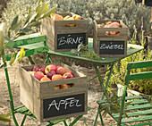 Holzkisten mit beschrifteten Tafelfeldern und frischer Ernte