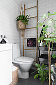Wooden ladder and houseplant in hanging basket next to toilet in white-tiles bathroom