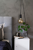 Pendant lamp above houseplant and alarm clock on bedside cabinet in bedroom