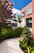 Weg durch den Vorgarten zum modernen Backsteinhaus