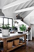 Pllanzen und Körbe auf rustikalem Holztisch in der offenen Küche