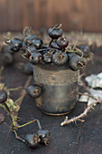 Black, dried rose hips in tarnished silver beaker