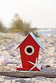 Bird box and starfish on beach