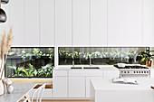 Open modern white kitchen with plant terrarium as a kitchen back wall