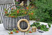 Ingredients for autumn wreath with rose hips