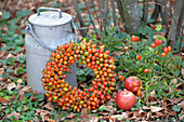 Autumn wreath with rose hips on a straw wreath