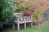 Garden bench in November decorated with pumpkins, lantern and asters