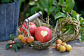 Small basket with apples, heart cut into the bowl as decoration