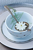 White aquilegia in tea strainer and asparagus fern sprig in bowl