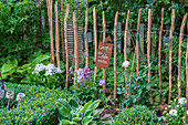 Picket fence in garden bed with rose, delphinium, phlox, hosta and boxwood