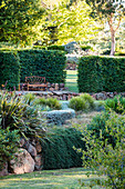 Terran-shaped garden with hornbeam hedge
