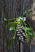 Fir cone decorated with sprig of misteltoe