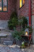 Festive outdoor arrangement of fir trees, wreath and lantern