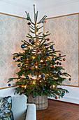 Weihnachtsbaum in der Ecke mit Ornament-Tapete in Zierleisten