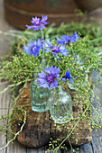 Small bottles with cornflower blossoms and bedstraw