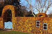 Autumn beech hedge with window and garden gate (Kreislehrgarten, Steinfurt, Germany)