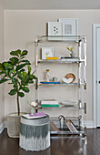 Glass and stainless shelving filled with books, flowers and various items, potted fig tree and stool with ombre fringe