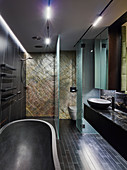 Designer bathroom in dark shades