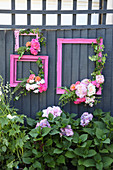 Pink picture frames decorated with flowers on wooden fence in garden