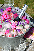 Bottle of sparkling wine, flowers and flower ice cubes in zinc bucket in garden