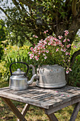 Kettle used as decorative planter in garden