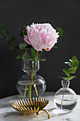 Peony and eucalyptus in small vases next to golden dish