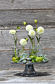 Arrangement of white pompom dahlias, green tomatoes and houseleeks
