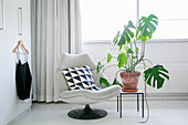 Swiss cheese plant on side table next to grey easy chair