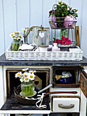 Plant stand and vases of ox-eye daisies on old wood-fired cooker