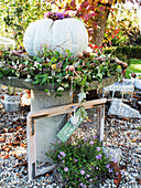 Arrangement of ornamental squash in wreath of ivy on stone table