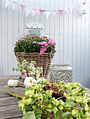 Asters in wicker basket below bunting behind hops, ornamental squash and acorns