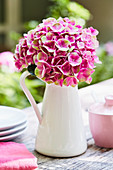 Pink hydrangea in a white enamel pot